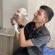 Rus finosu yavrusu sahiplendirme
